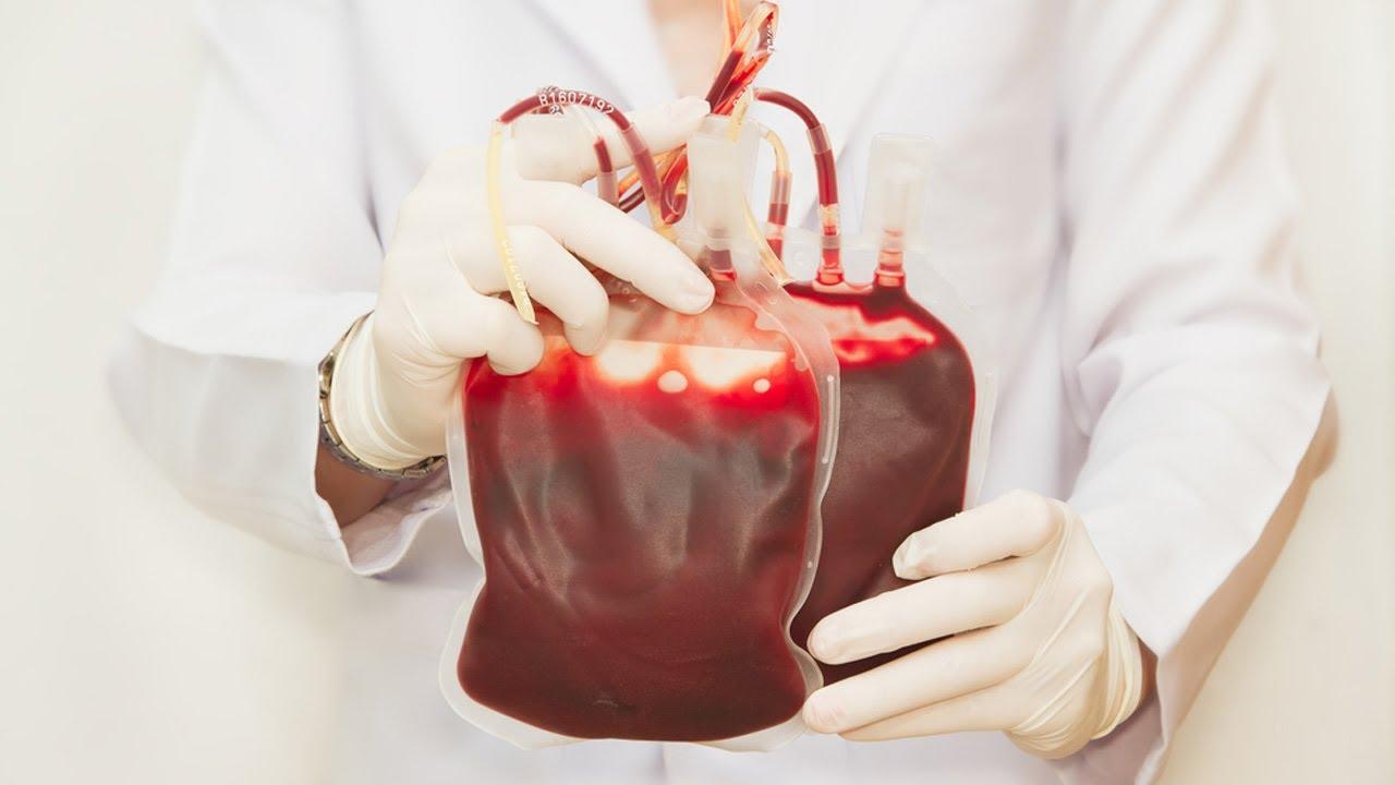 Cosa sai sulla donazione del sangue? [QUIZ]