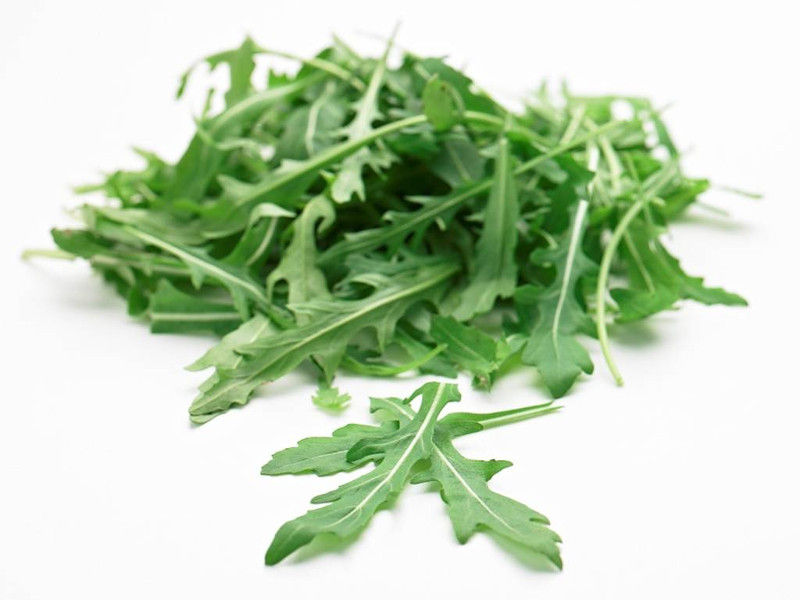 Rucola verdura