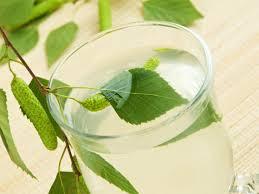 acqua di betulla