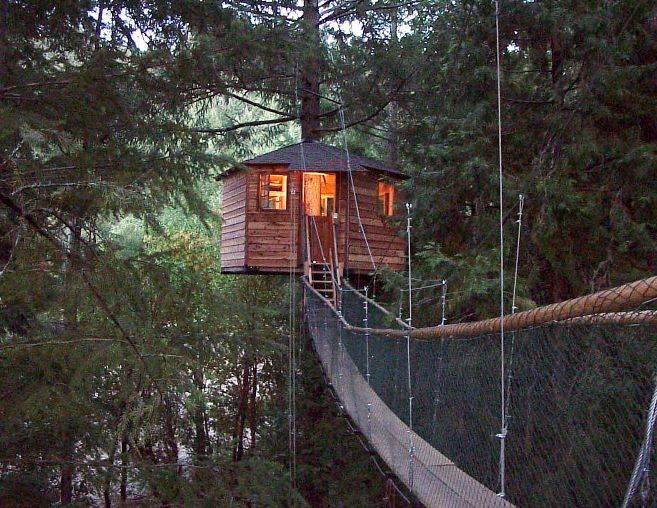 hotel sugli alberi