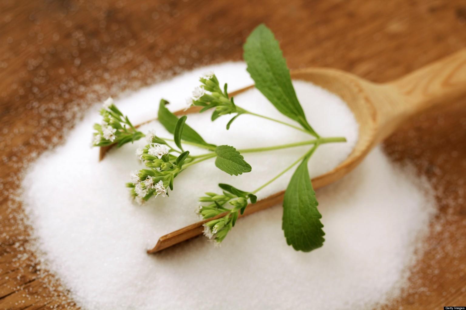 stevia benefici