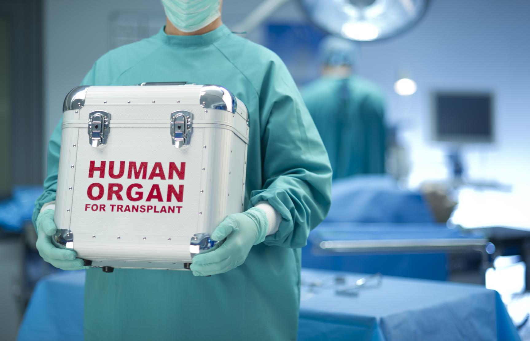 Cosa sai sulla donazione degli organi? [QUIZ]