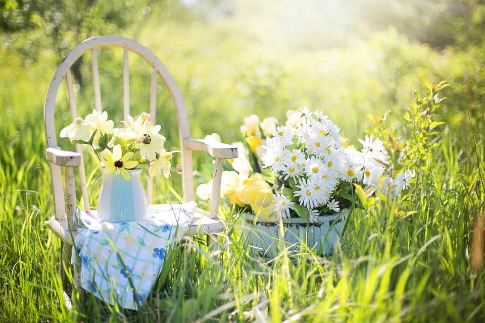 Quale tipo di giardino sei? [TEST]