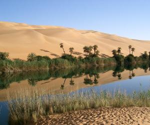 Libia oasi