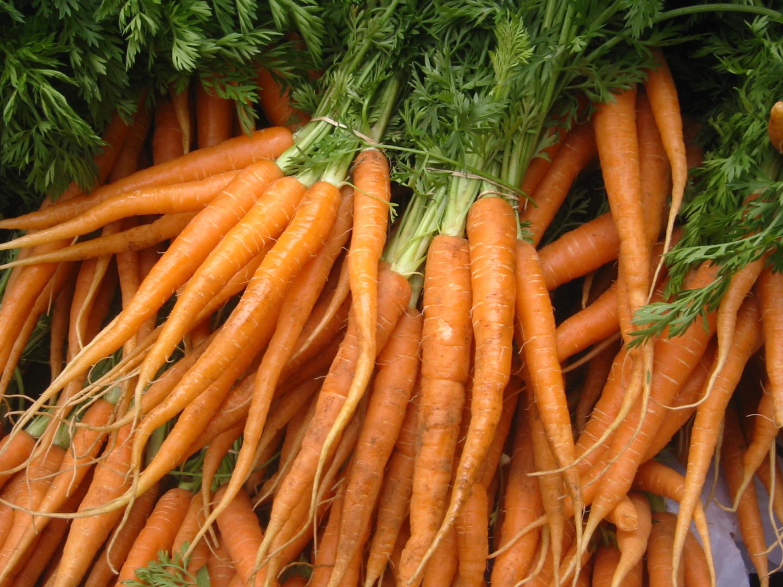5 ricette carote