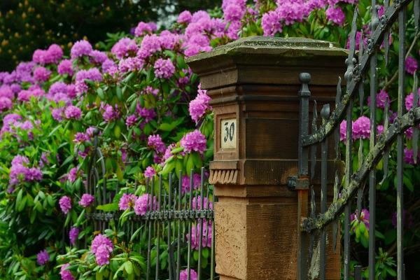 Cancello fiori
