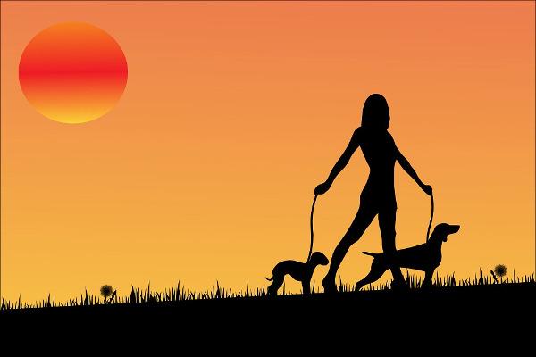 Passeggiata cani
