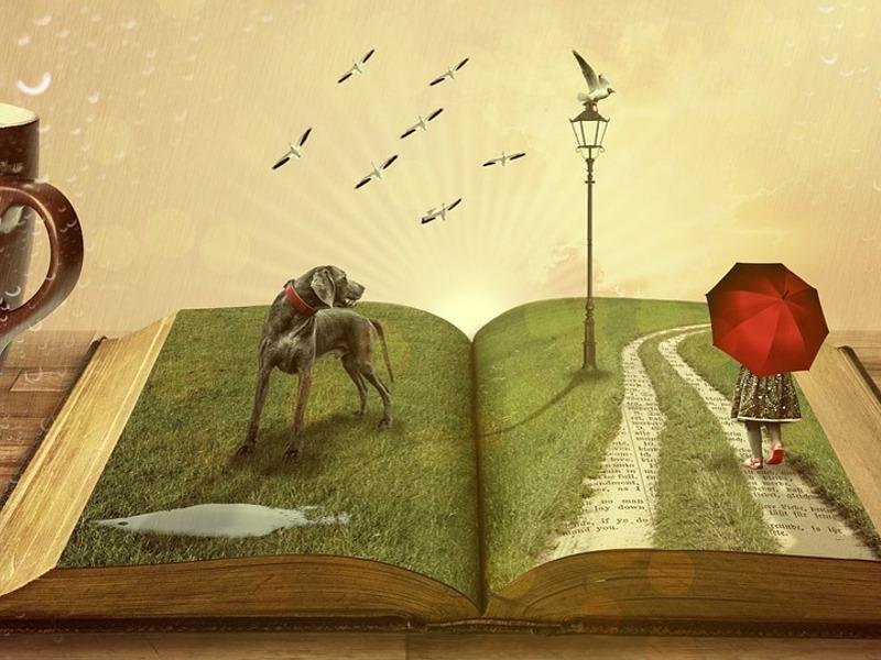 Leggere libro