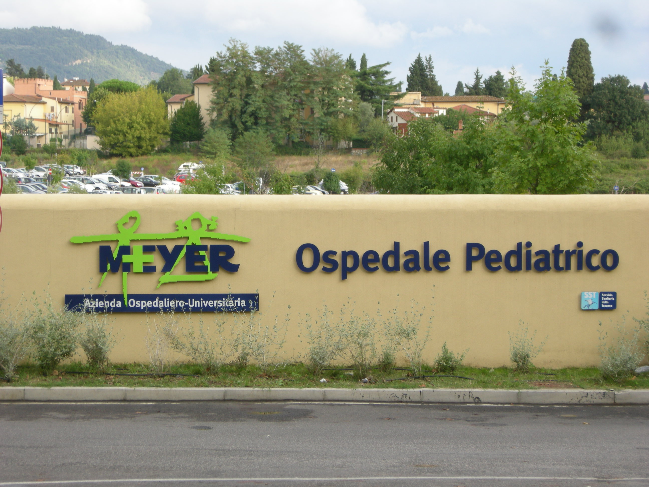 Ospedale-meyer-ingresso