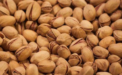 Come coltivare i pistacchi