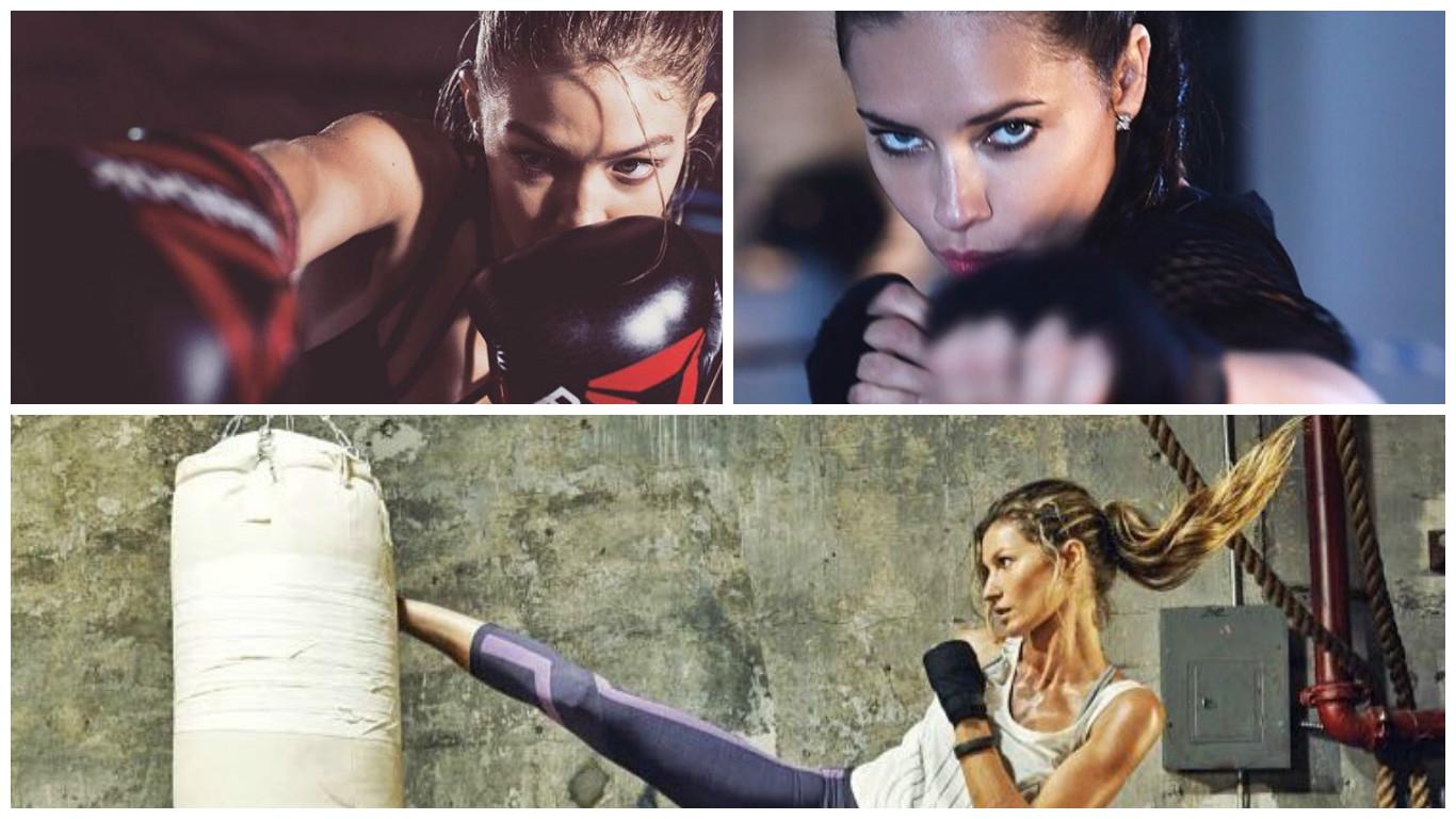 boxe modelle