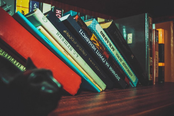 Scaffale libri