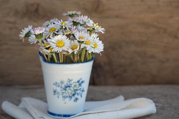 Margherite vaso