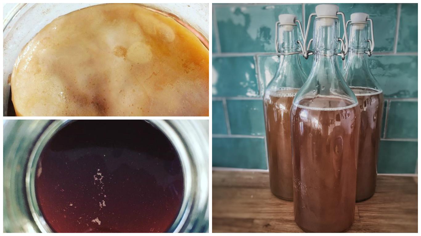 Kombucha, il tè detox per la linea: benefici e controindicazioni