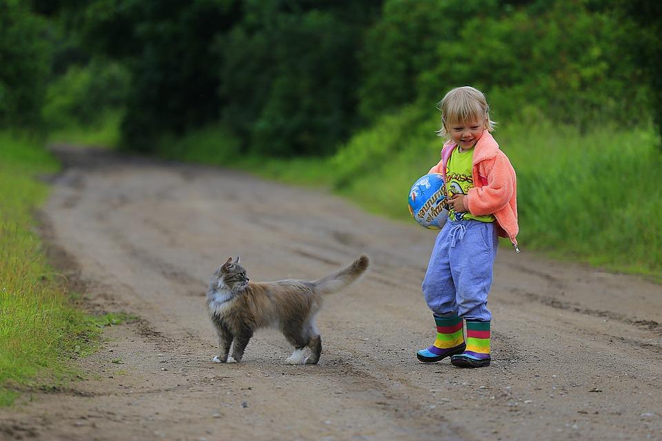 gatto-fortifica-sistema-immunitario-bambini