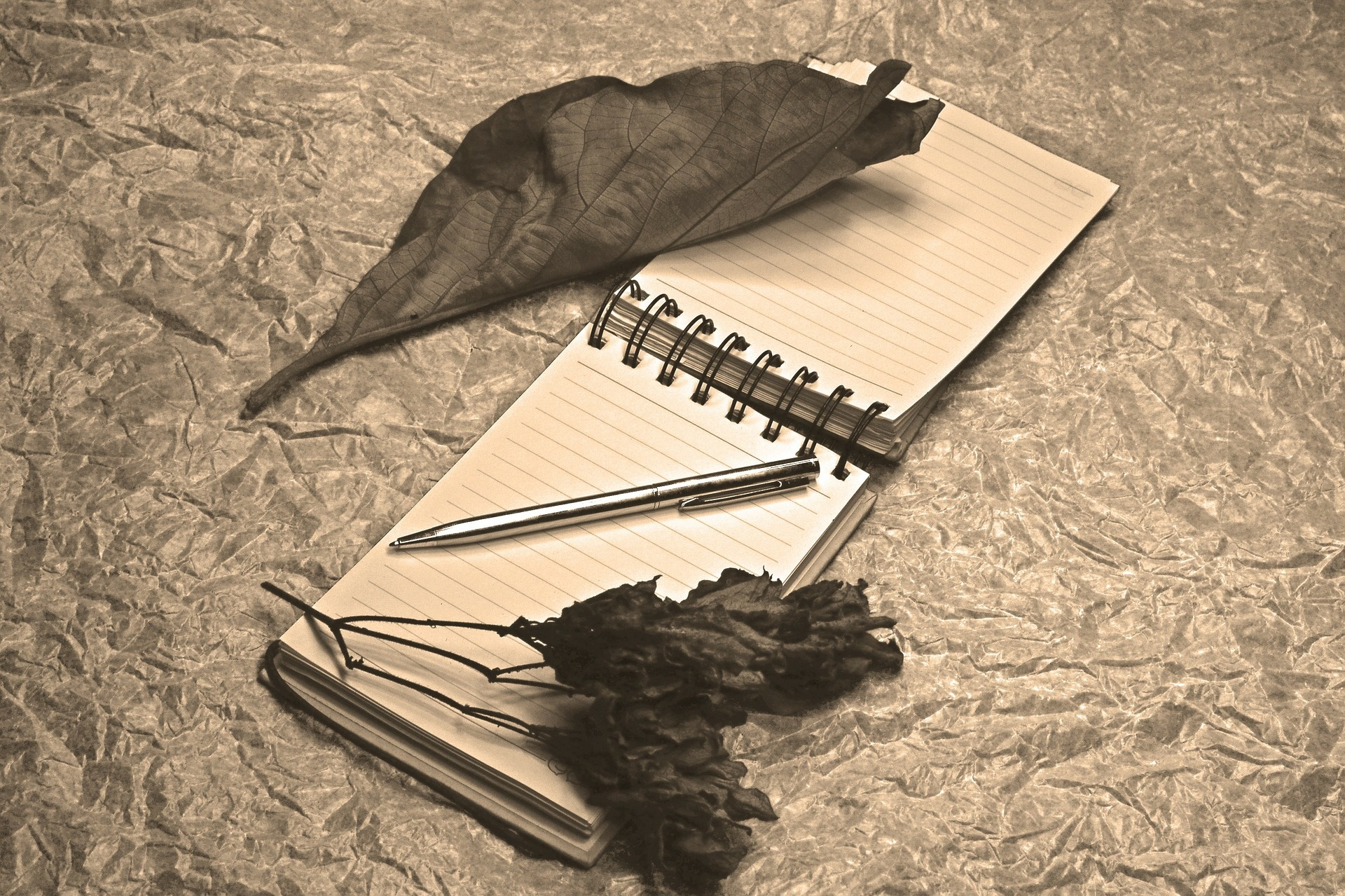 Poesie d'amore celebri e d'autore per il tuo lui
