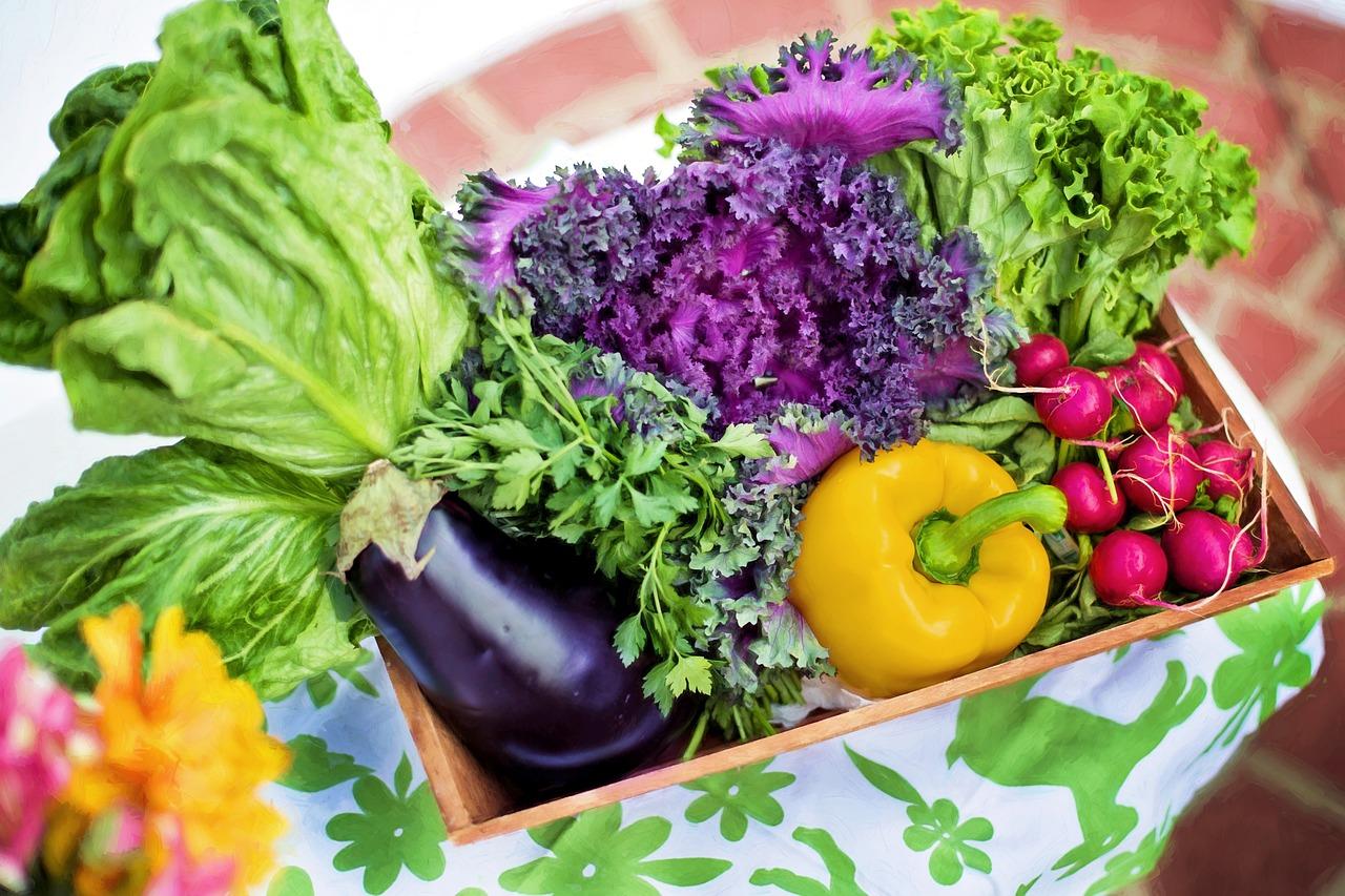 La dieta a zona vegetariana: menù, ricette e esempi