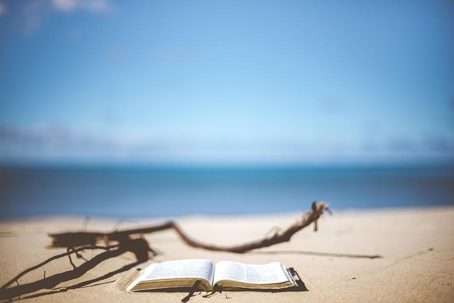 Libro estate
