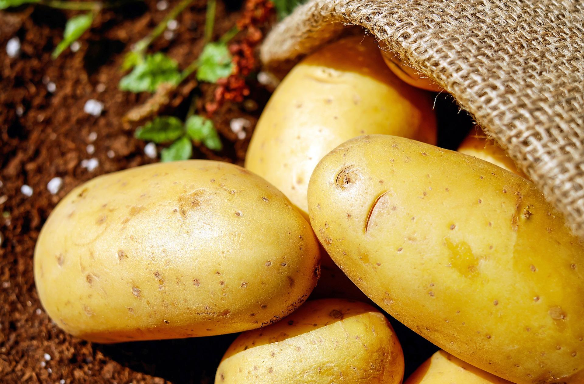 le patate lesse ingrassano