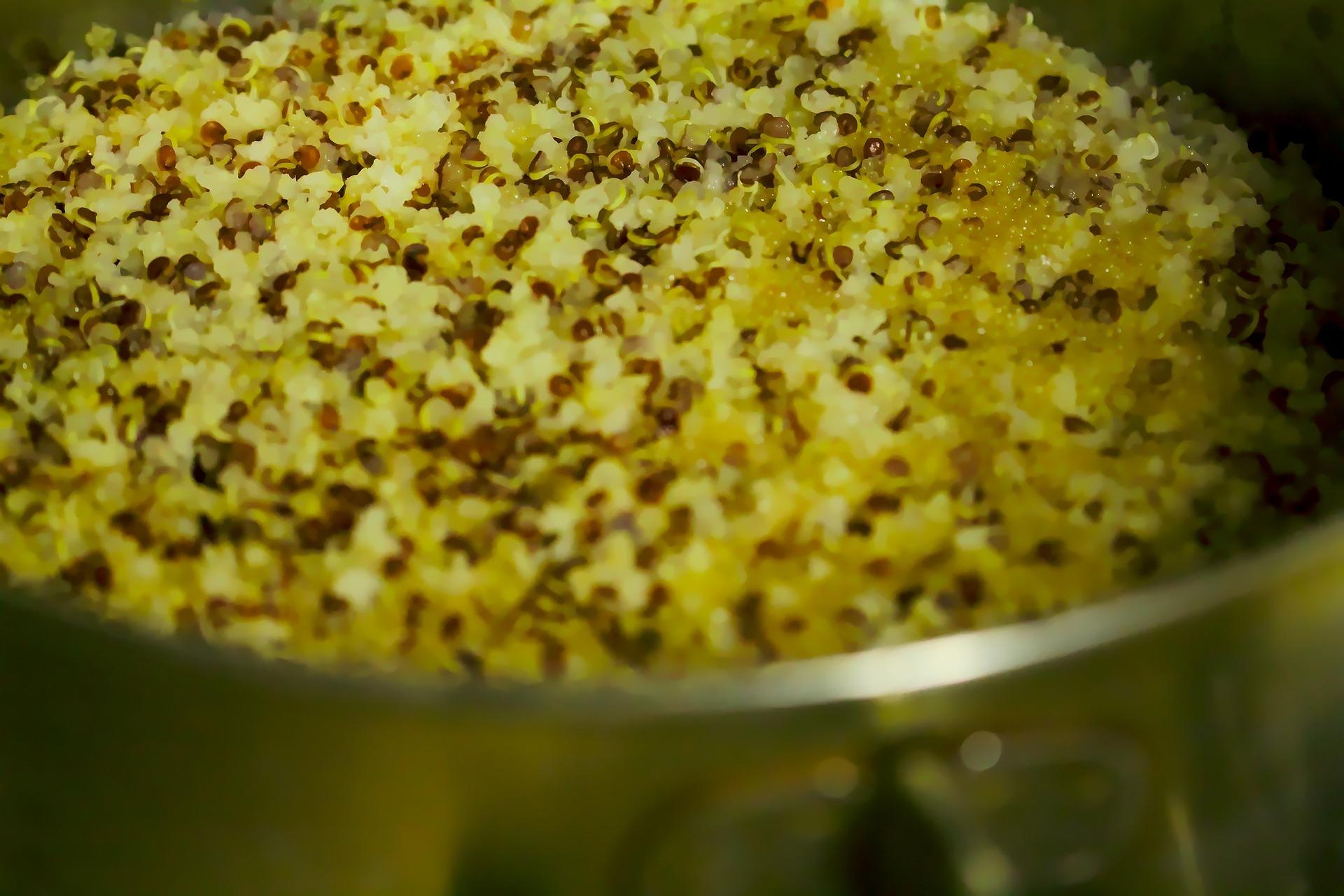 quinoa 5 kg in 7 giorni