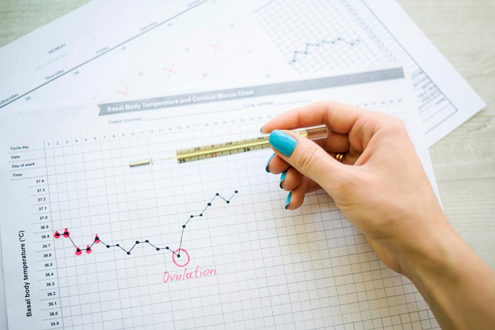 temperatura basale ovulazione
