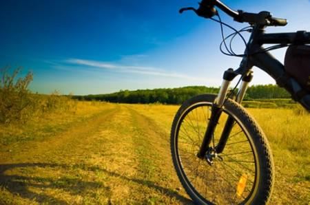bicicletta sport