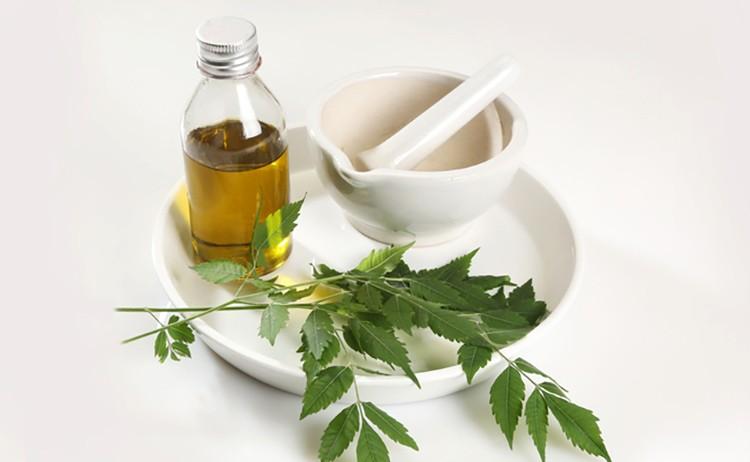 olio neem controindicazioni