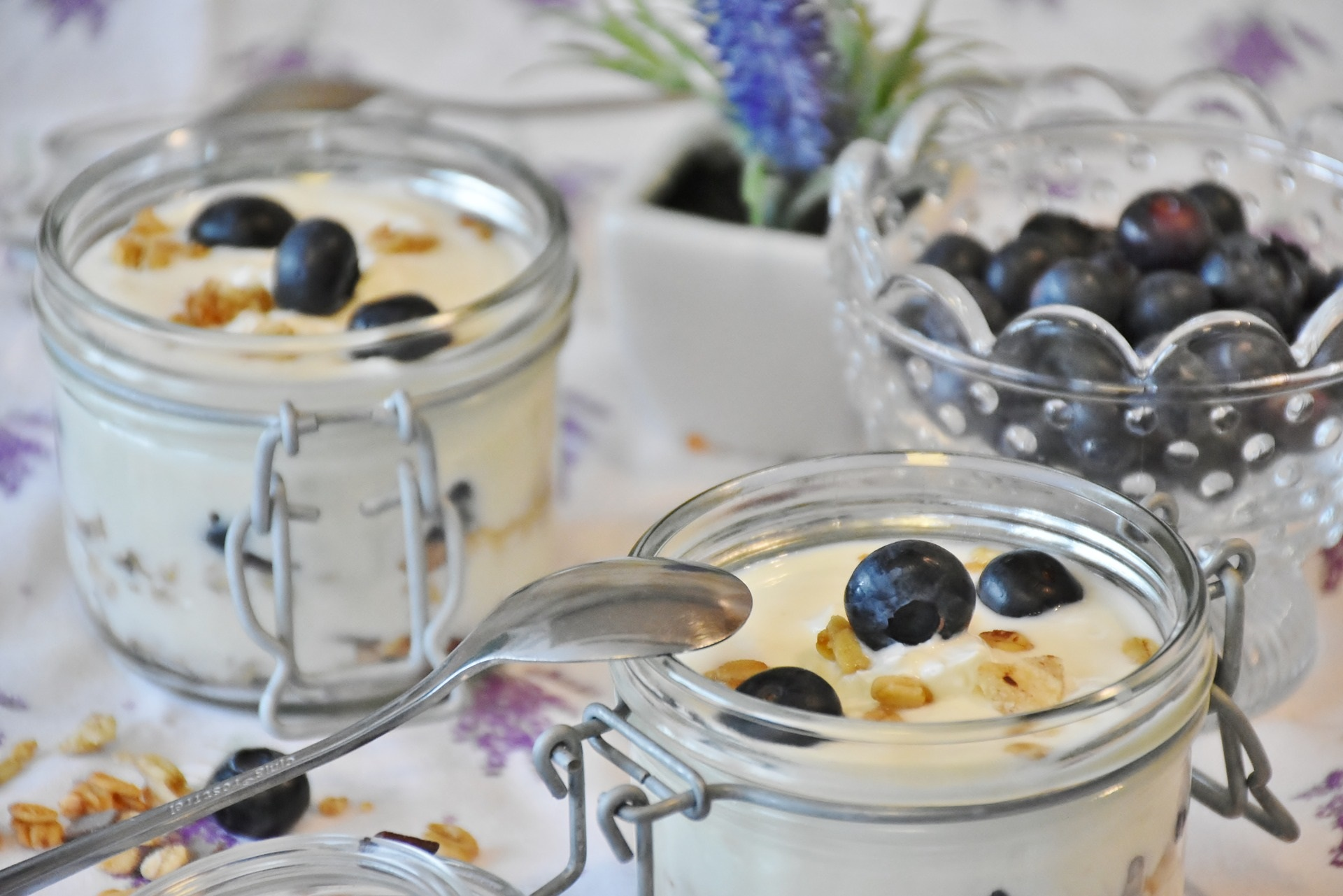 yogurt mirtilli