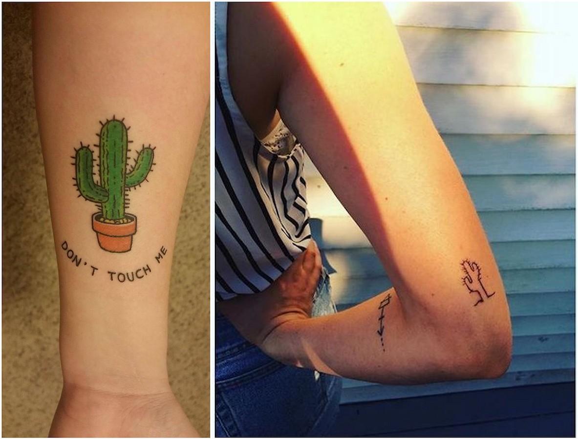 disegni cactus