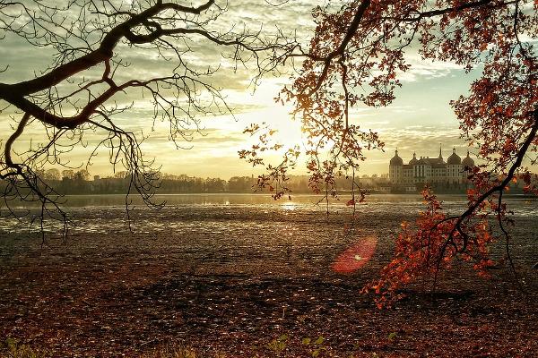 Dresda autunno città