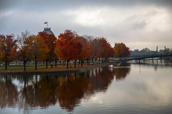 Montreal autunno città