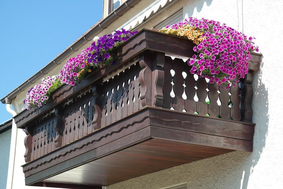 Piante Per Il Balcone Esposto A Sud Quelle Adatte Al Sole Forte E