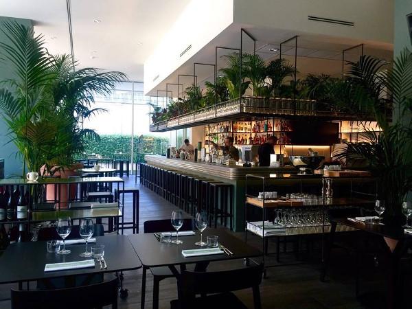 The Botanical Club