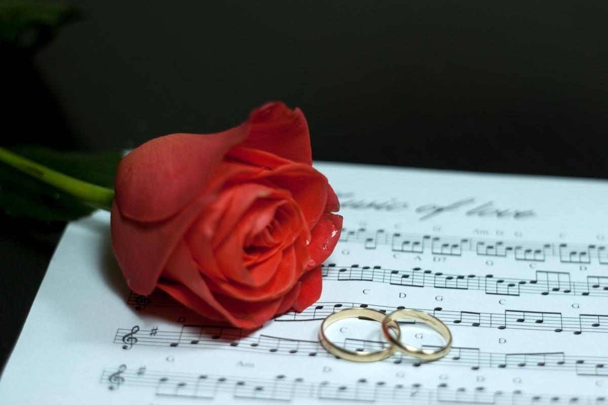 testi cerimonia delle rosa