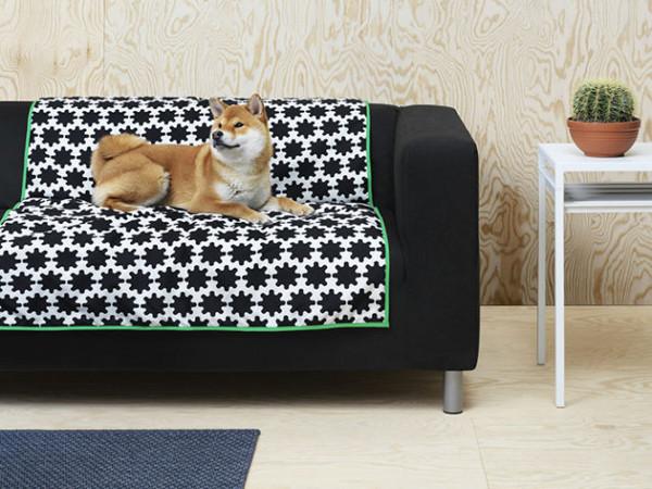 IKEA cane coperta