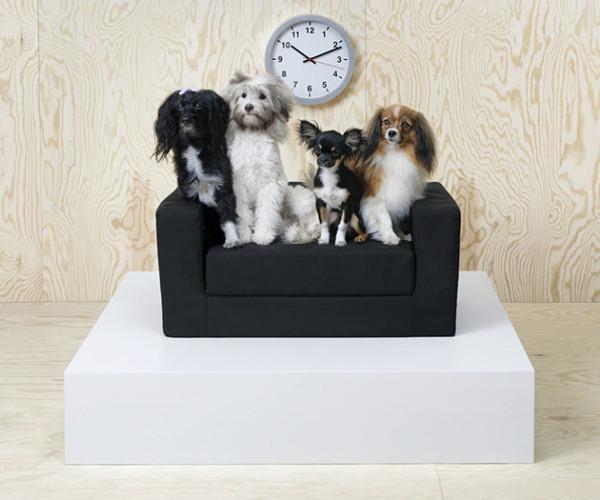 IKEA cani gatti divano
