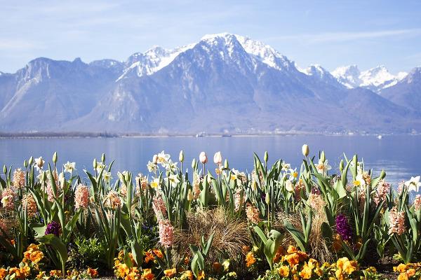 Montreux montagna arrivare