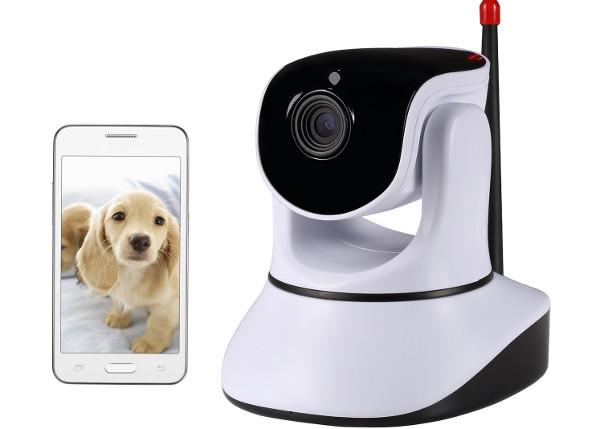 NexGadget videocamera per cani e gatti