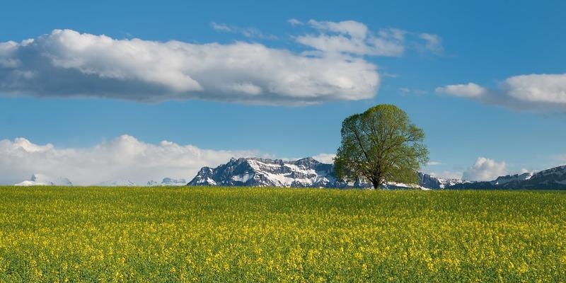 Svizzera estate