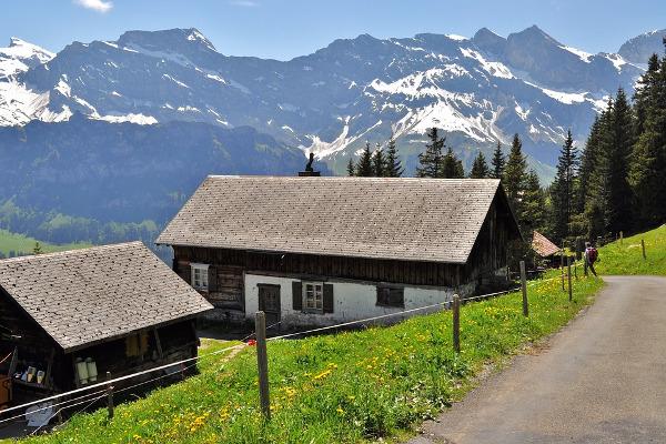 Svizzera montagne alpi estate