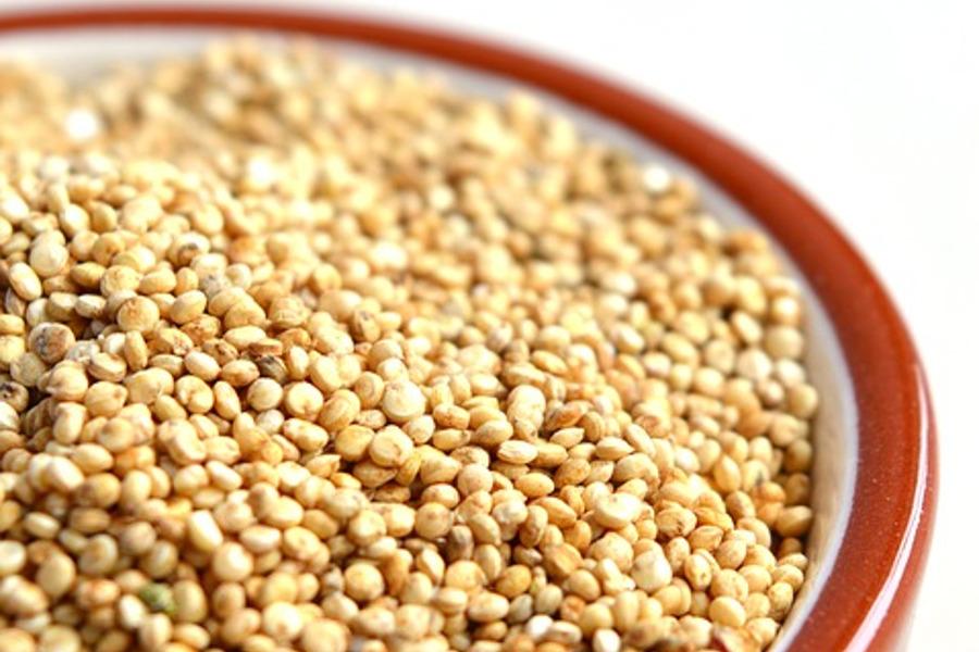 Quinoa, quando piantarla? Consigli sulla coltivazione