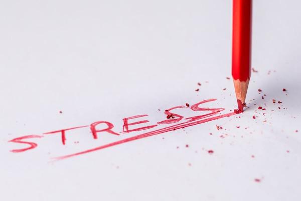 Uova stress