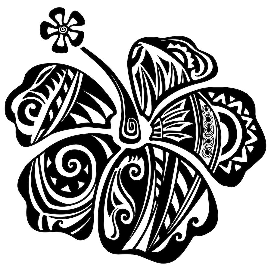 ibisco maori