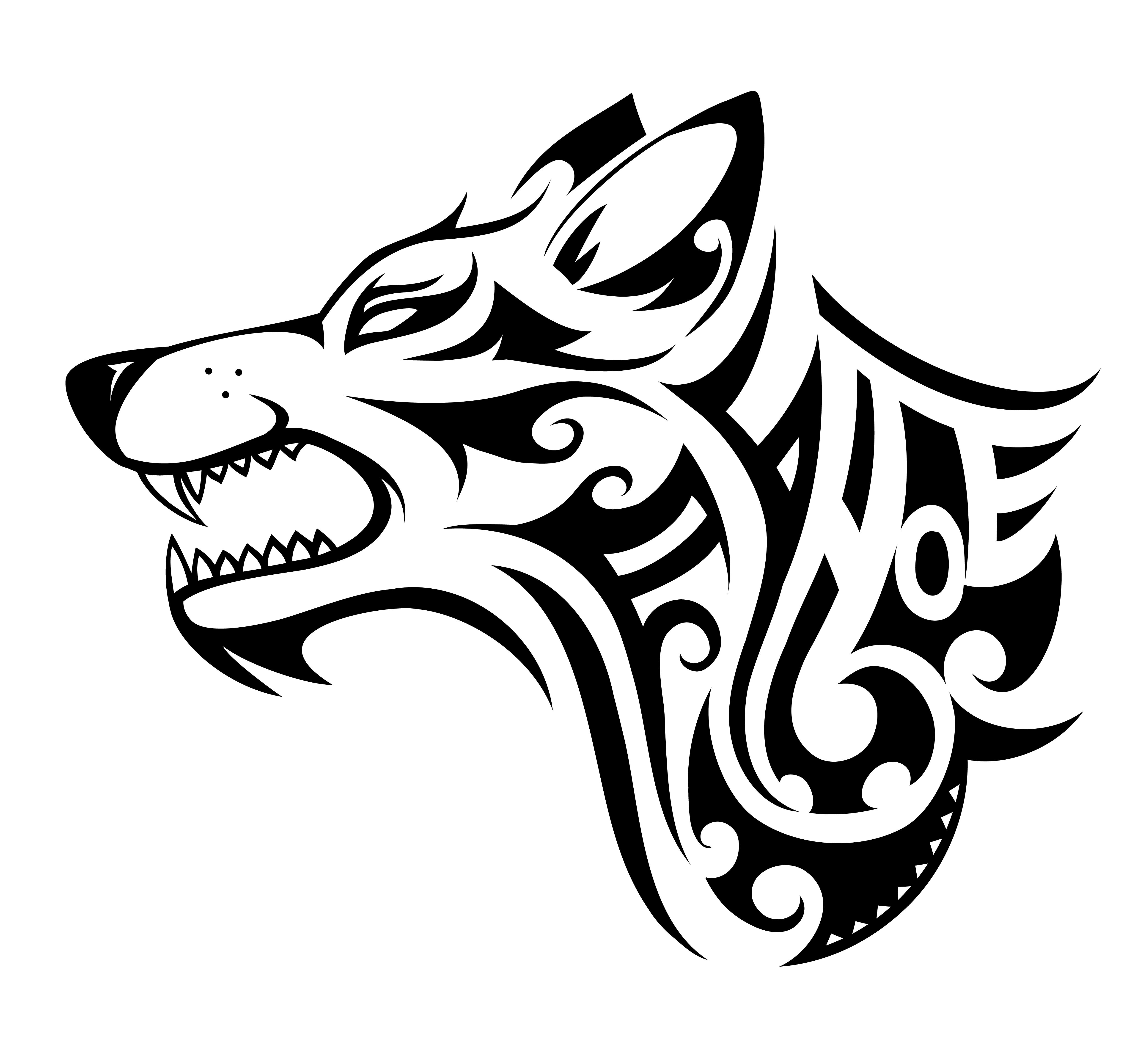 lupo maori