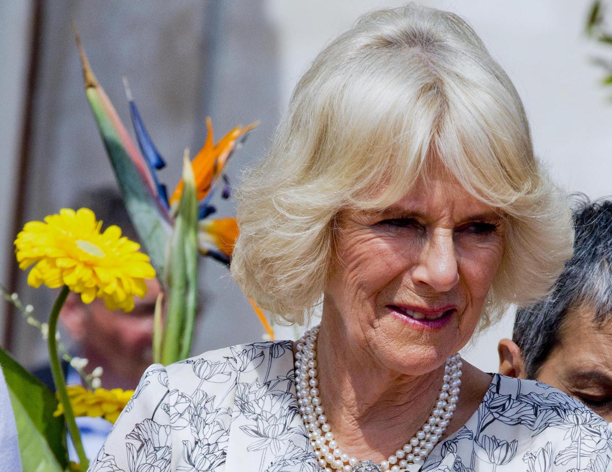 Il principe Harry sconvolge tutti con le sue dichiarazioni su Camilla