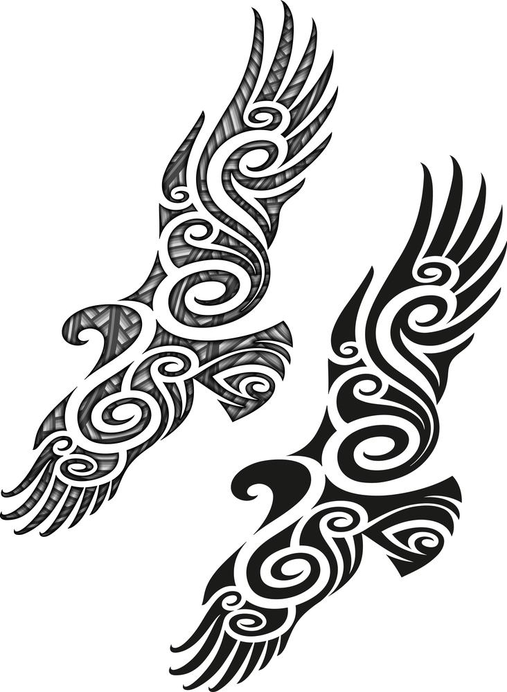 uccelli maori