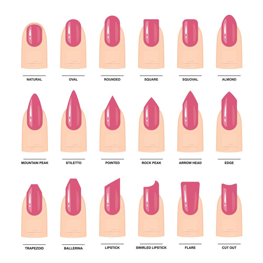 Le forme delle unghie