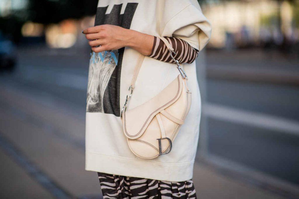 Saddlebag Dior