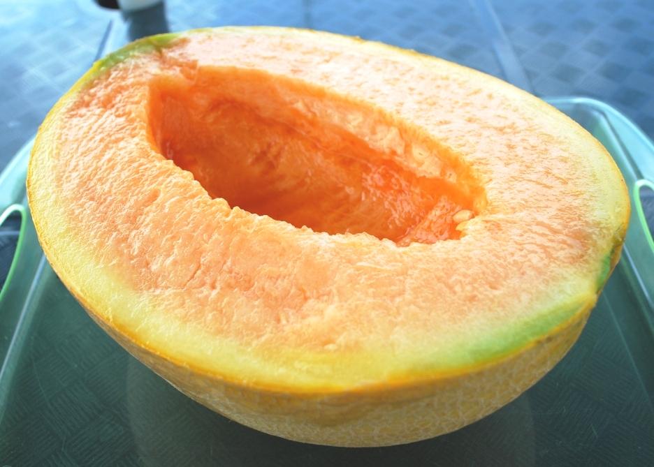 Yubari king melone
