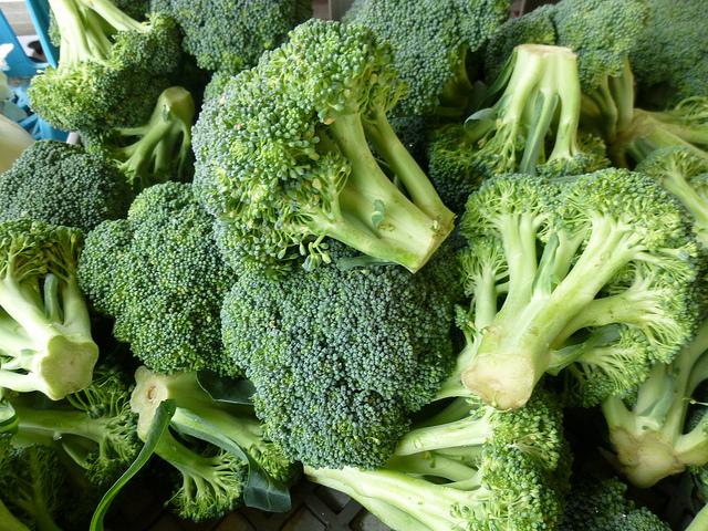 lasagna ai broccoletti
